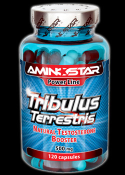 Tribulus Terrestris   500 mg   120