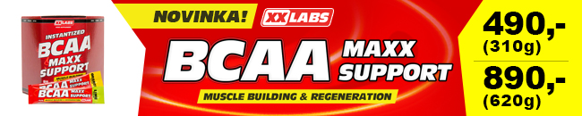 BCAA MAXX SUPPORT